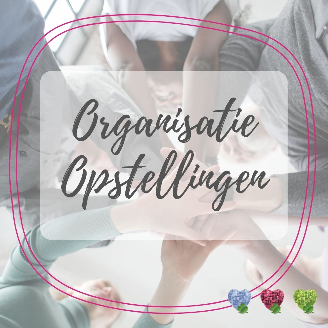 org opstelling2